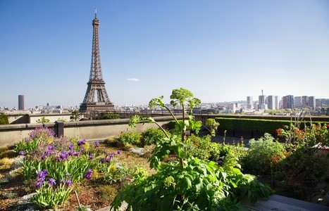 Paris lance ses Assises du Tourisme Durable 2021 Image 1